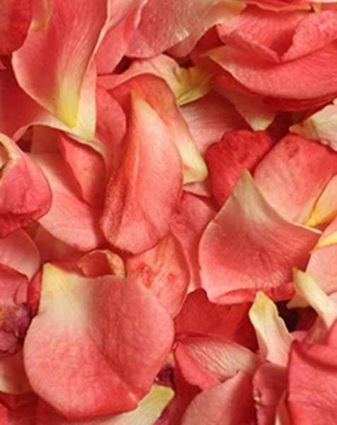 Facial Antioxidant Mist 100% Organic Rosewater